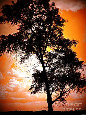 Sunset Tree Poster by Miss Dawn