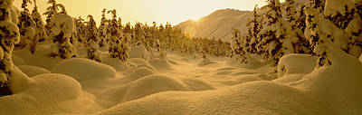 Sunset, Turnagain Pass, Alaska, Usa Poster