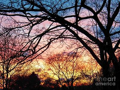 Sunset Under The Dogwoods Poster by Judy Via-Wolff