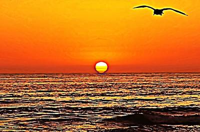 Sunset With Seagull Poster by Sharon Soberon