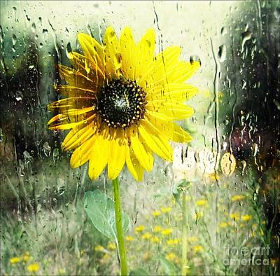 Sunshine Through The Rain Poster by Michelle Frizzell-Thompson