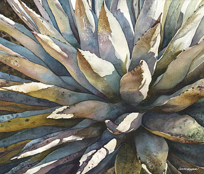 Sunstruck Yucca Poster by Anne Gifford