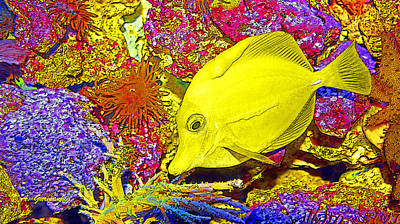 Surgeon Fish Yellow Tang Digital Art Poster