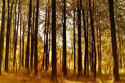 Surreal Autumn Poster by Kim Hojnacki