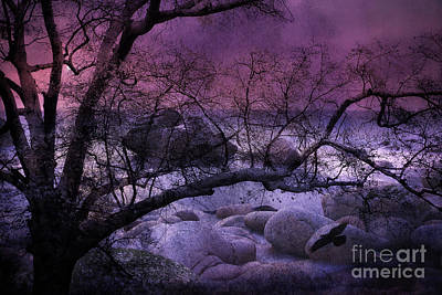Surreal Fantasy Haunting Trees Nature - Purple Pink Nature Trees Rocks And Flying Raven Poster by Kathy Fornal