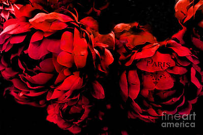 Paris Red Peonies -valentine Red And Black Surreal Flower Peony Art  - Paris Red Black Peony Decor Poster by Kathy Fornal