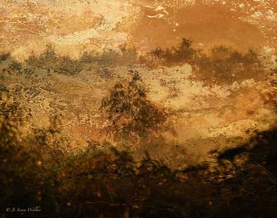 Swamp Foggy Sunrise Poster by J Larry Walker