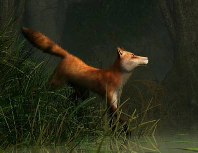 Swamp Fox Detail Poster by Daniel Eskridge