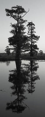 Poster featuring the photograph Swamp Mirror by Silke Brubaker