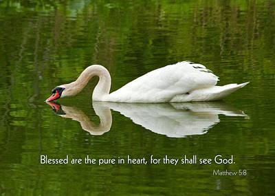 Swan Heart Bible Verse Greeting Card Original Fine Art Photograph Print As A Gift Poster