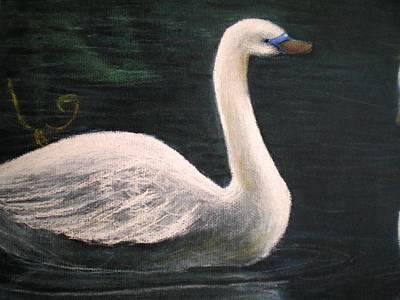 Swan I Poster