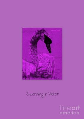 Poster featuring the photograph Swanning In Violet by Linda Prewer