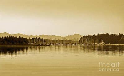 Swantown Marina And The Olympics In Sepia Poster