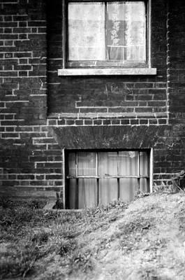 Sweet Mystery Of...windows Poster by David M Davis