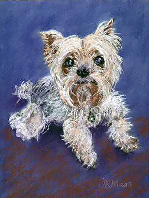 Sweet Yorkie Poster by Julie Maas