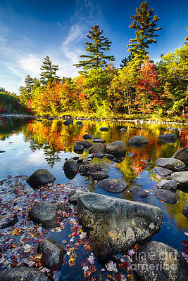 Swift River Autumn Reflections Poster