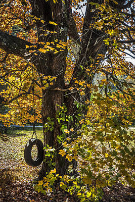 Swing In The Maple Tree Poster by Debra and Dave Vanderlaan