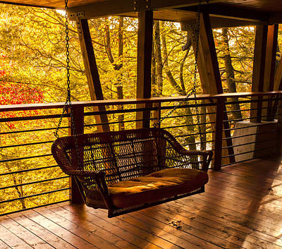 Swinging In Autumn Trees Original Photograph Poster