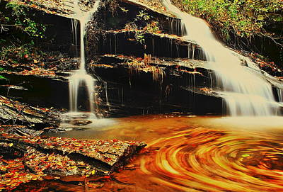 Swirling Leaves Poster