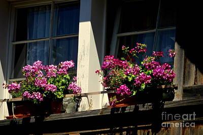 Swiss Chalet Flower Window Poster by Susanne Van Hulst
