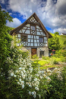 Swiss Chalet In The Garden Poster