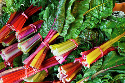 Swiss Chard At The Community Supported Poster