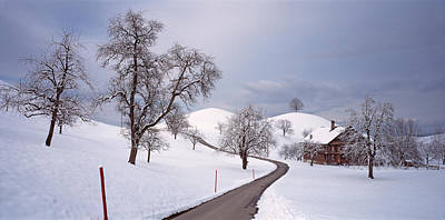Switzerland, Canton Of Zug, Linden Poster