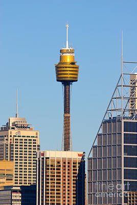 Sydney City Skyline With Sydney Tower Poster