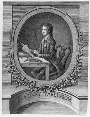 Sydney Parkinson, Scottish Artist Poster
