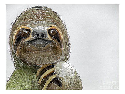Sydney The Three-toed Sloth Poster by John Gaffen