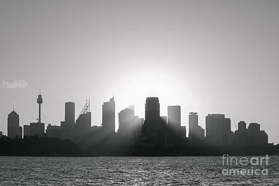 Sydney's Evening B/w Poster