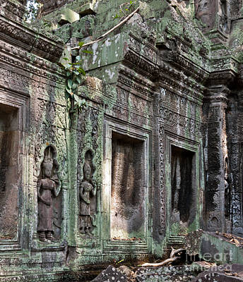 Ta Prohm Temple 03 Poster by Rick Piper Photography