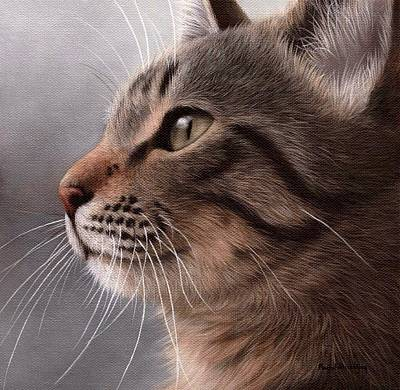 Tabby Cat Painting Poster