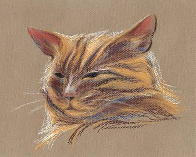 Tabby Cat Portrait In Pastels Poster by MM Anderson