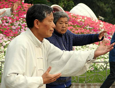 Tai Chi And Flowers Poster