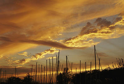 Tall Masts At Sunset Poster by Jane Eleanor Nicholas