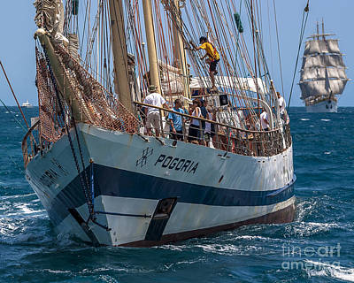 Tall Ship Pogoria Poster by Pablo Avanzini