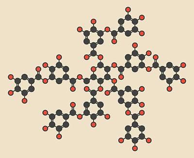 Tannic Acid Molecule Poster