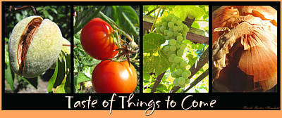 Taste Of Things To Come Photo Collage Poster