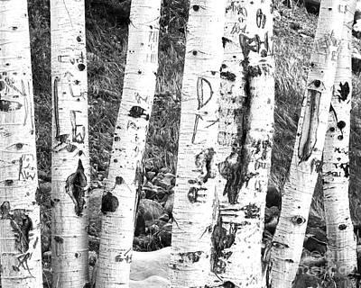 Tattoo Trees Poster