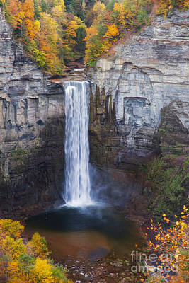 Taughannock Falls In Autumn Poster