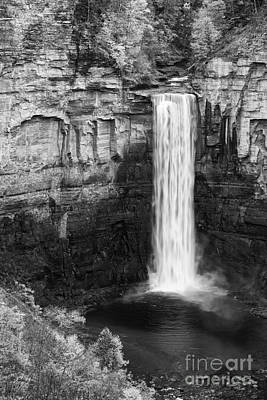 Taughannock Monochrome II Poster by Michele Steffey