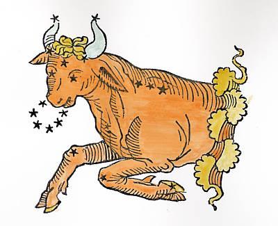 Taurus An Illustration Poster by Italian School