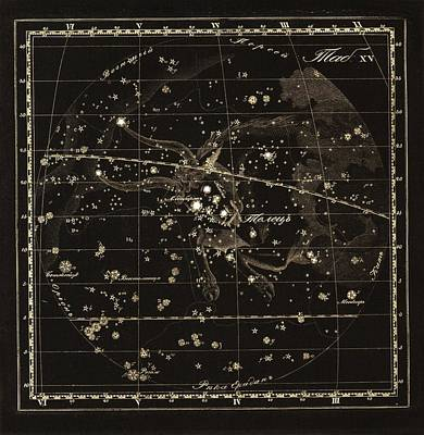 Taurus Constellation, 1829 Poster