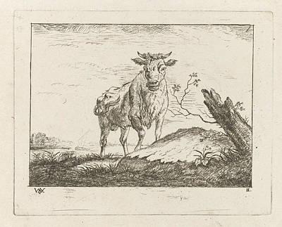 Taurus On Riverbank, Johannes Janson, Monogrammist Wva Poster by Johannes Janson And Monogrammist Wva