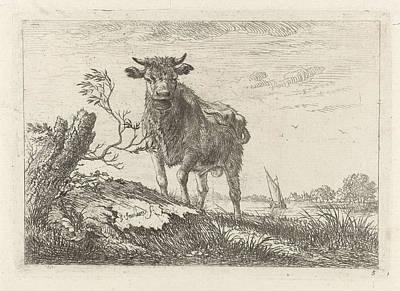 Taurus On The Riverbank, Johannes Janson Poster by Johannes Janson
