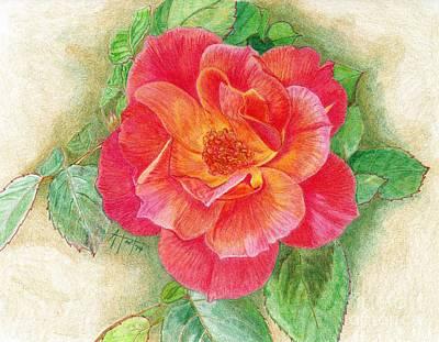Tea Rose Poster by Audrey Van Tassell