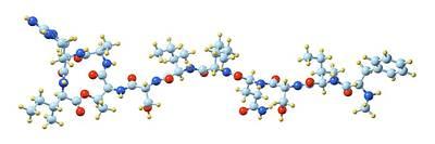Teixobactin Antibiotic Molecule Poster