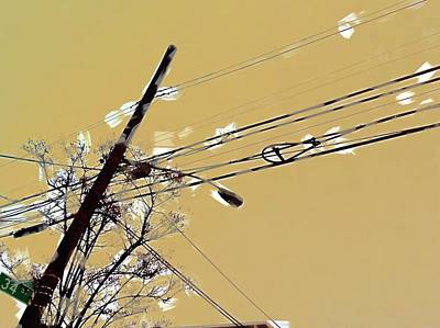 Telephone Pole With Light Poster by H James Hoff