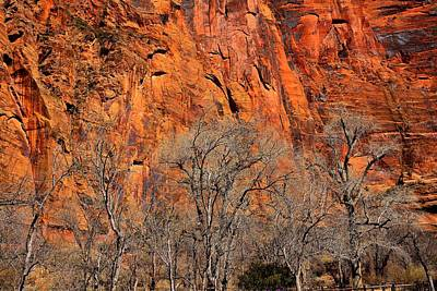 Temple Of Sinawava Poster